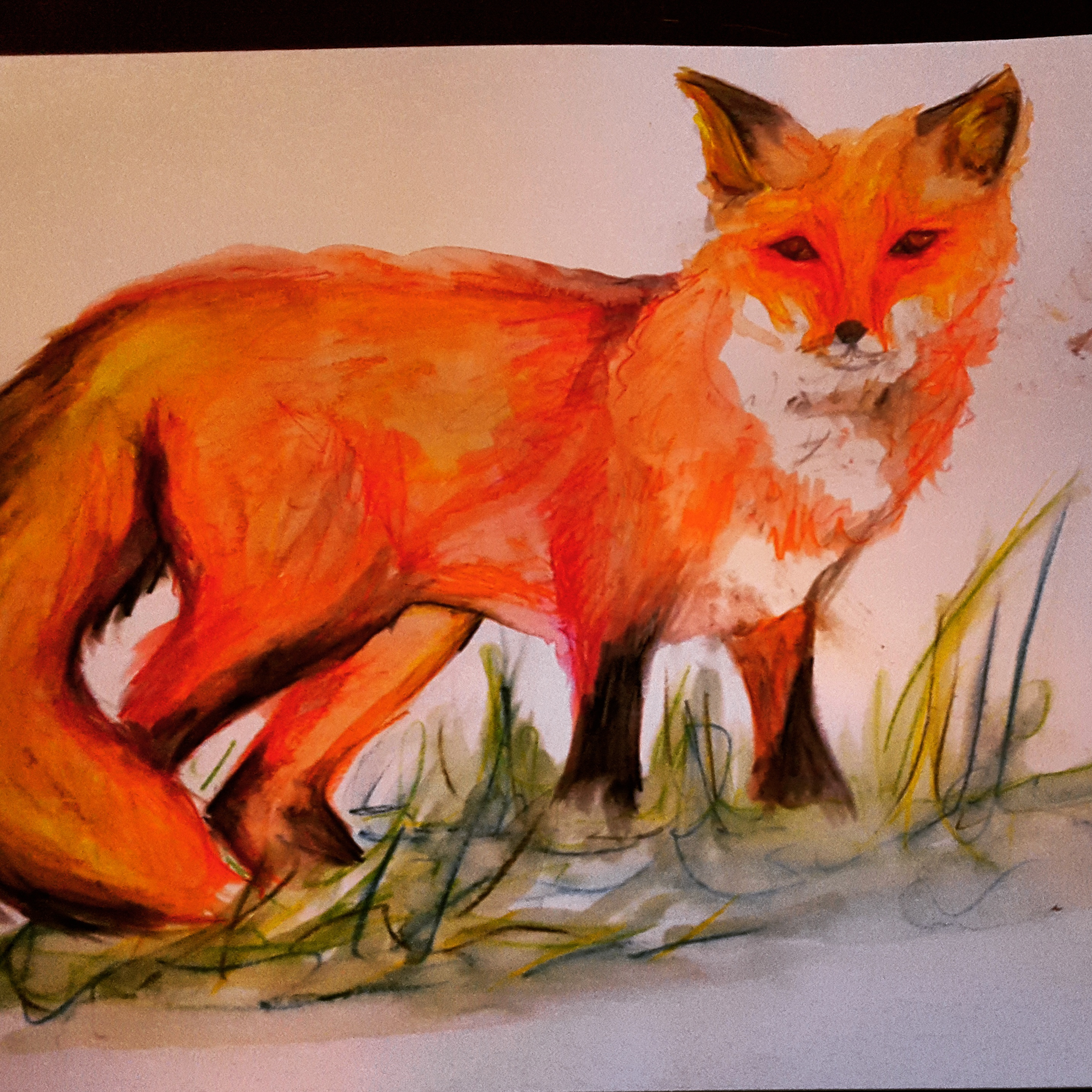 My watercolour of a fox.