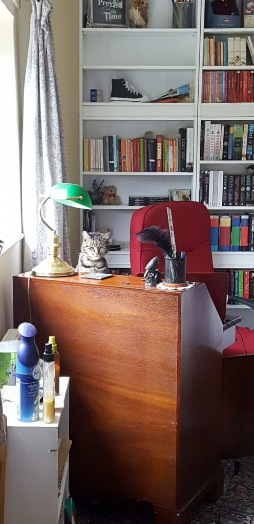 Top 10 Things On My Writing Desk